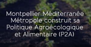 Film Politique Agroécologique et Alimentaire Chaire Unesco Alimentations du Monde