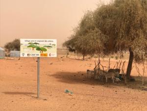 Lutter contre la sécheresse et le changement climatique en Mauritanie