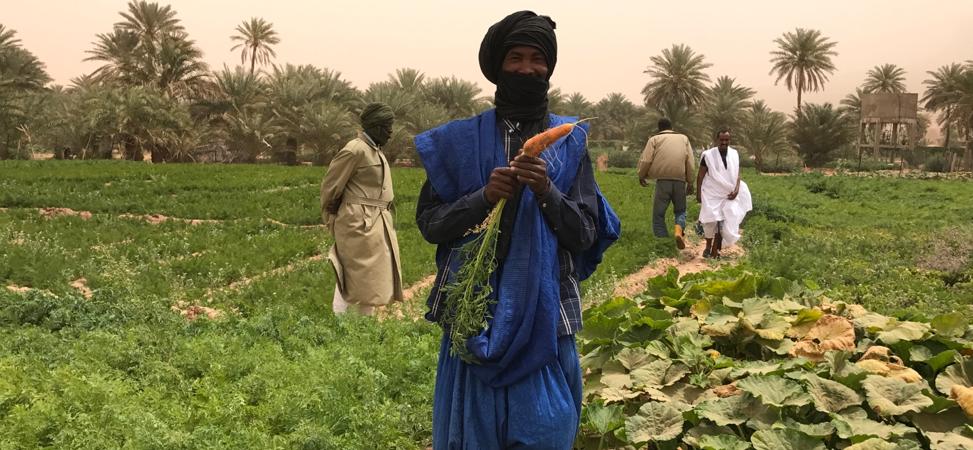 Résilience en Mauritanie Agriculture biologique
